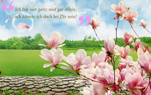 facebook_sprueche1