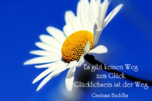 kurze_spruche04