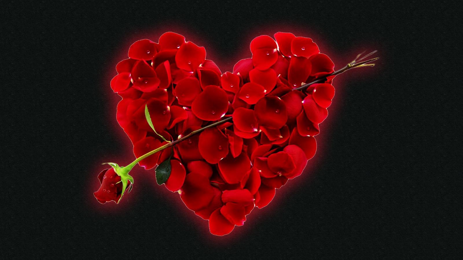 Liebessprüche Zitatelebenalle