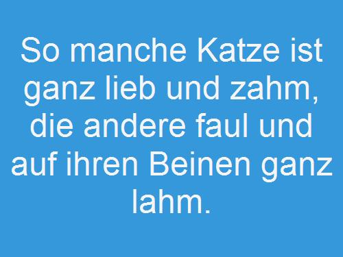 katzensprueche4