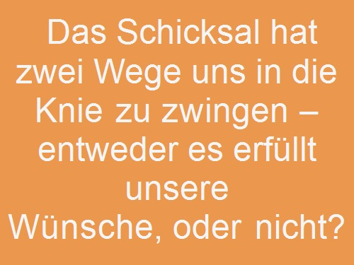 schicksal-sprueche-und-zitate7